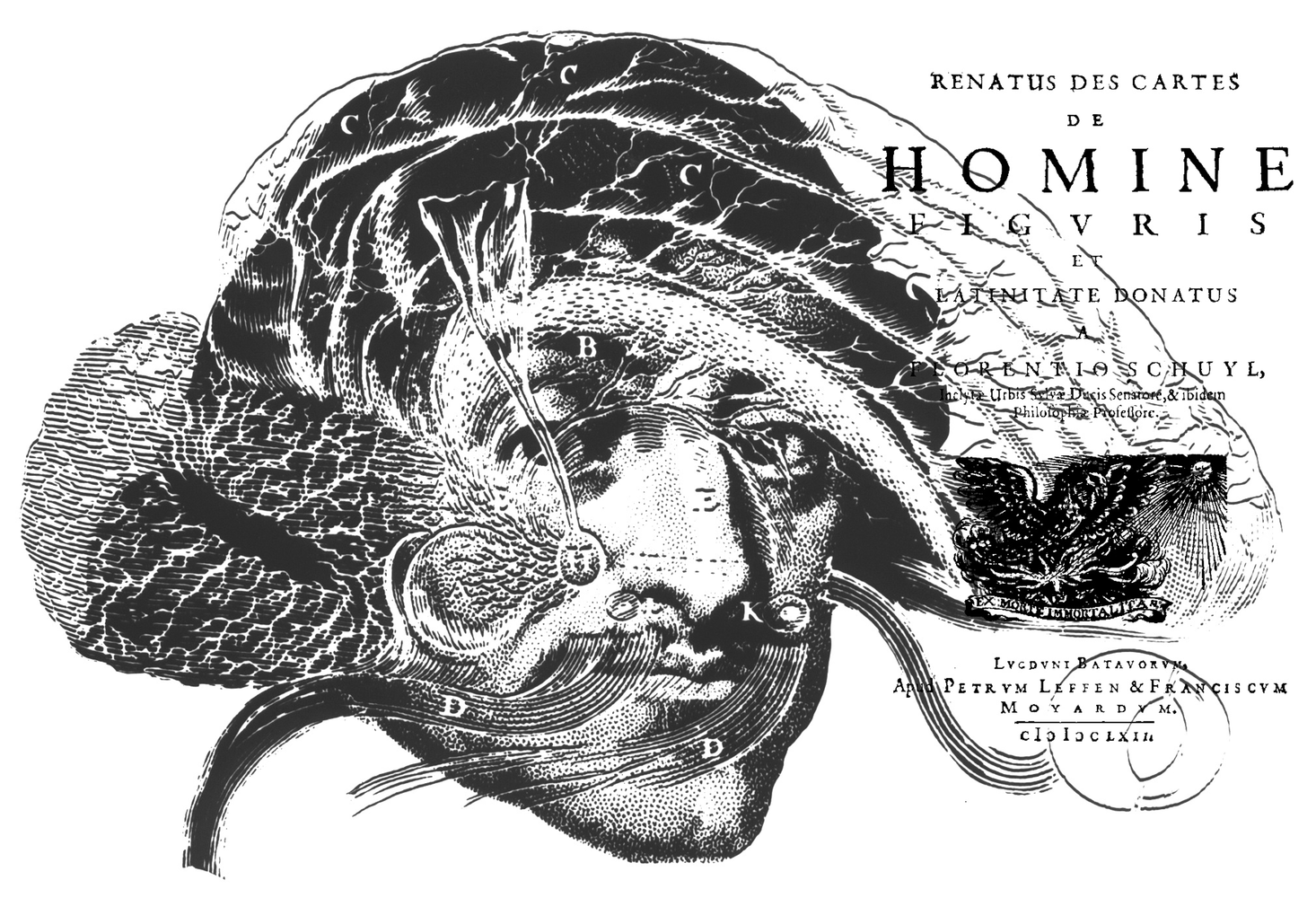Descartes'ın Beynindeki Tuhaf Bombe
