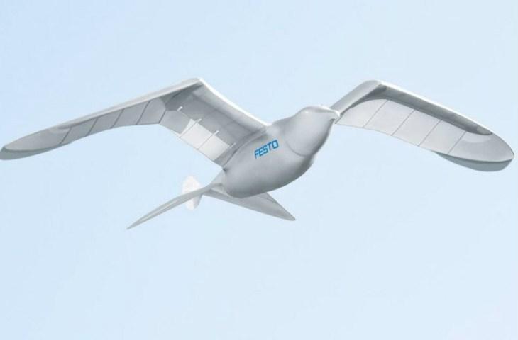 Drone kuş ile insanlar izleniyor
